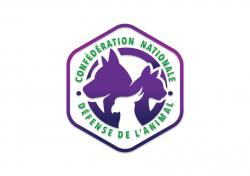 Logo defensedelanimal couleur